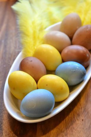 varjatyt_munat luonnonvärit