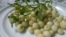 Valkoiset-mustikat-lautasella2-Hirvonen