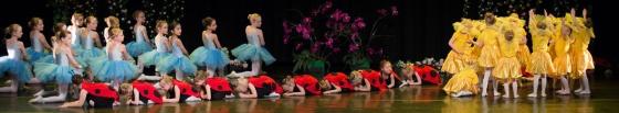 Baletti koulu Sinikello