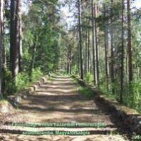 Punkaharju régi út