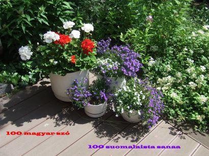 100 magyar szó 100 finn szó