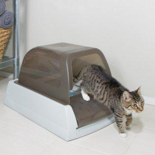 kissan vessa