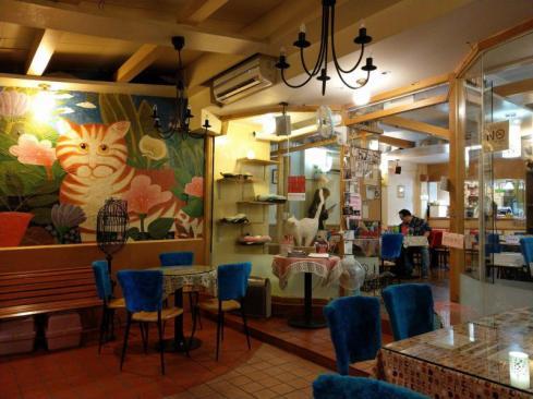 Taipee Kitten Coffee garden