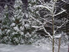 Elsö hó Espooban okt. 29.-én