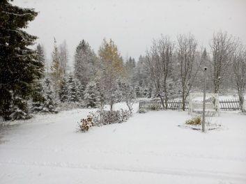 Sanna Mehtälä: Rovaniemi