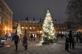 Turku, Régi fötér