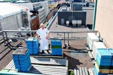 Citymehiläiset Savoy-in katolla