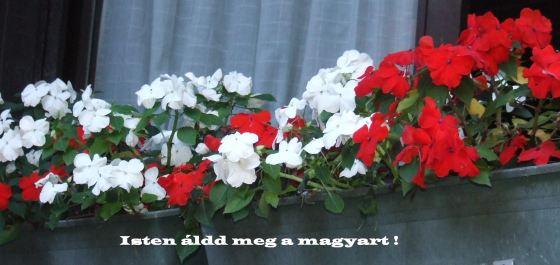 Augusztus 20 2012 Istren áldd meg a magyart