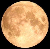 kuu15