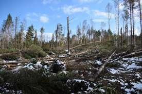 Åland myrskytuho